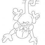 Images of Monkeys - Drawing