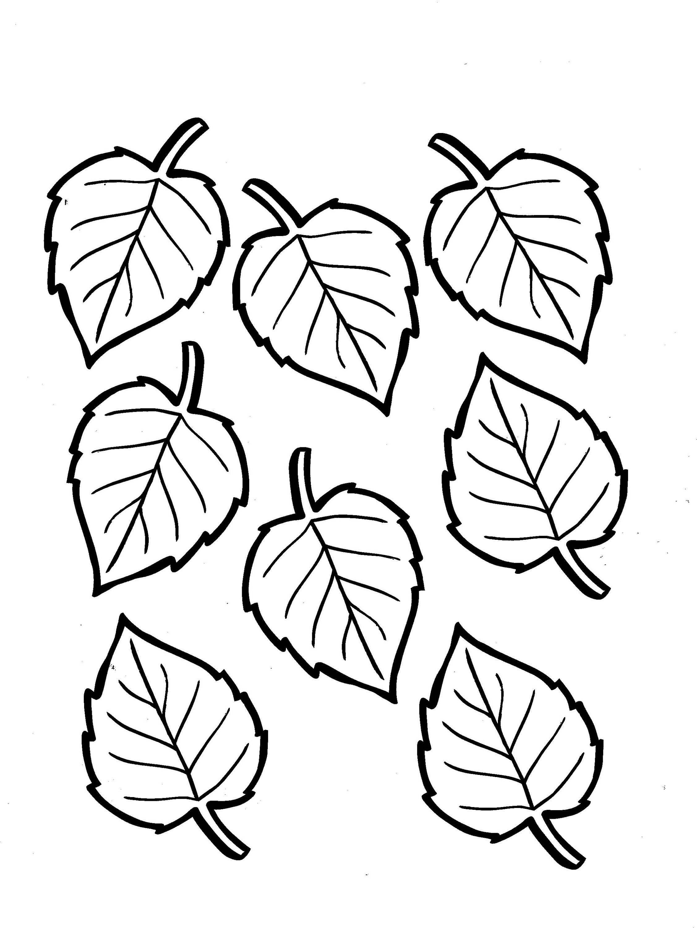 leaf coloring page free