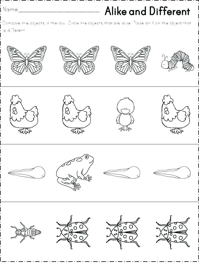 Same and Different Worksheets Printable