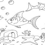 Color Pages of Fish - Coloring