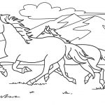 Horse Color Pictures - Coloring book
