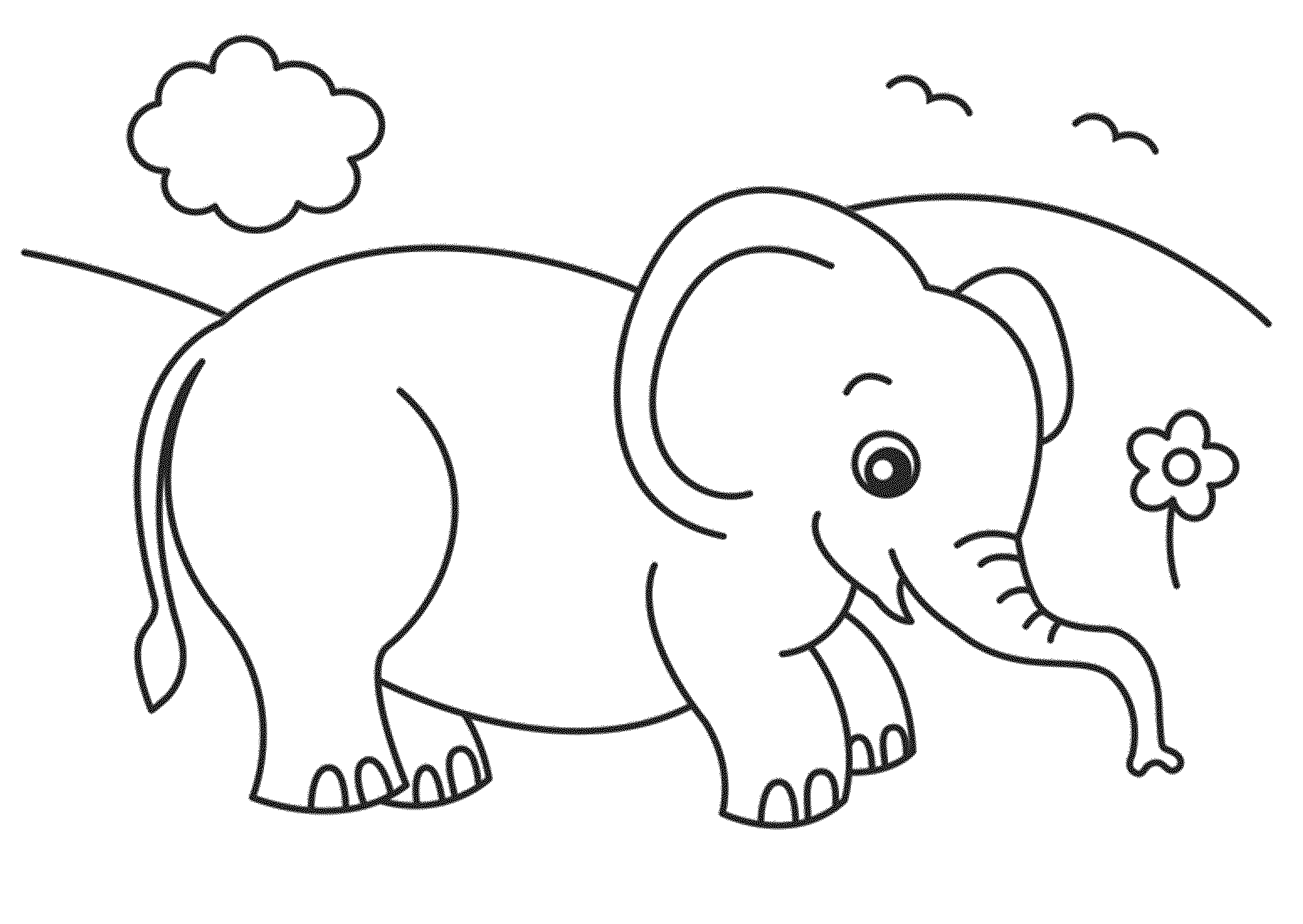 childrens coloring pages elephant