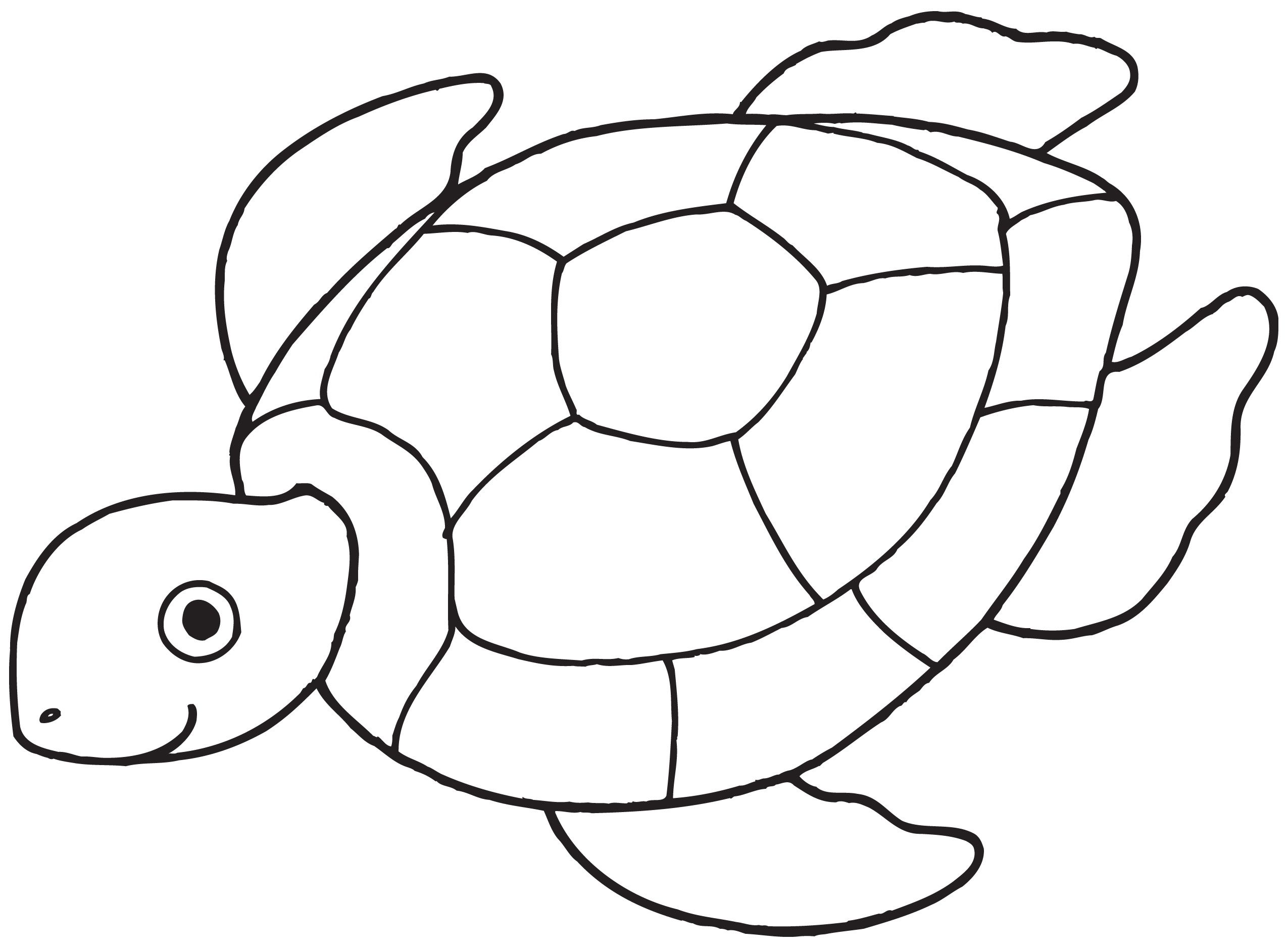 easy printable turtle coloring pages