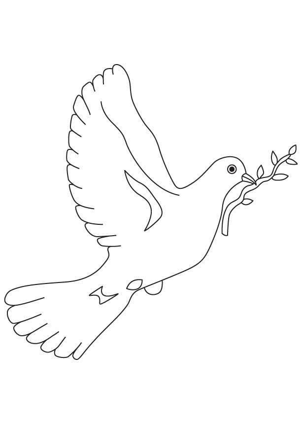 cute pigeon coloring pages