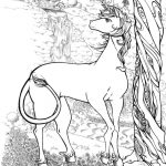 realistic unicorn coloring pages activity