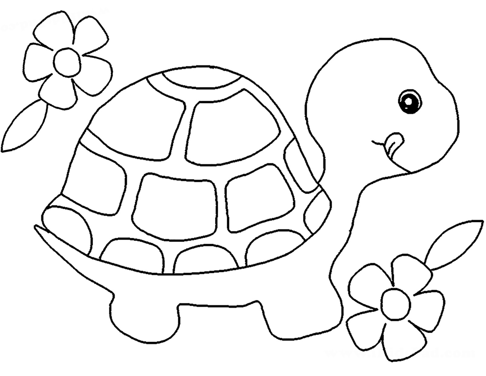 cute turtle coloring pages for toddler